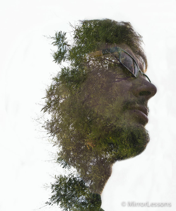 To make it seem that the trees were growing out of Mathieu's head, I used the Color Range option in Photoshop to select the trees. This allowed me to erase the background without losing any detail around the fine branches.