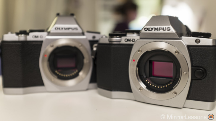 3 versus 5 axis stabilization: Can the Olympus OM-D E-M10 keep up with the E-M5?