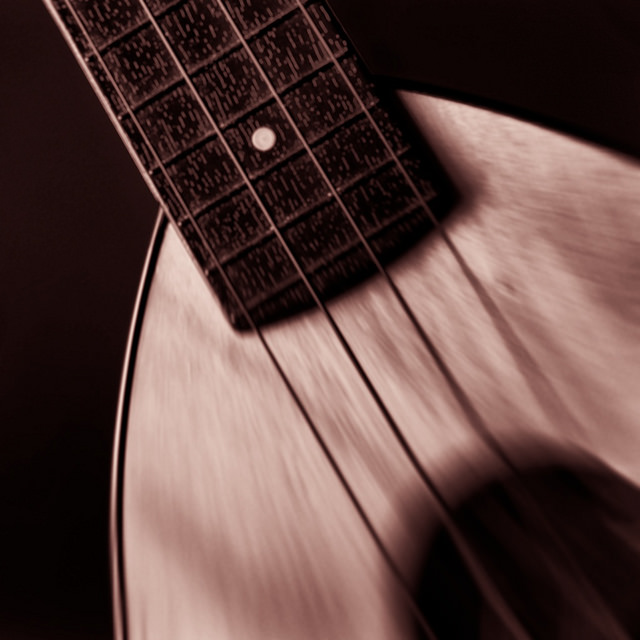 A Ukulele in Black and White by Gene McDaniel