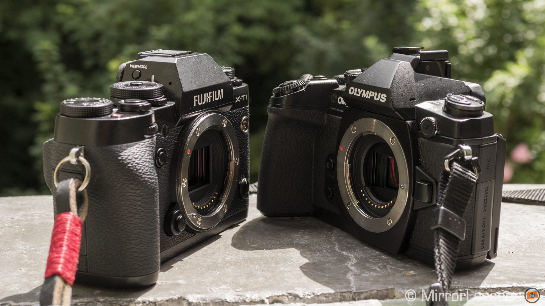 Olympus OM-D E-M1 vs. Fujifilm X-T1