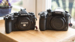 Moved: OM-D E-M1 vs GH4