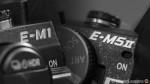 Moved: Olympus OM-D E-M1 vs. OM-D E-M5 Mark II