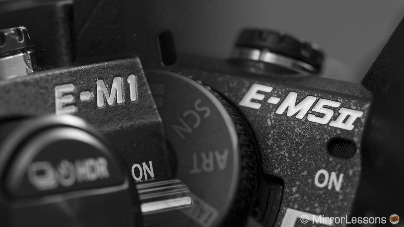 Olympus OM-D E-M1 vs. OM-D E-M5 Mark II