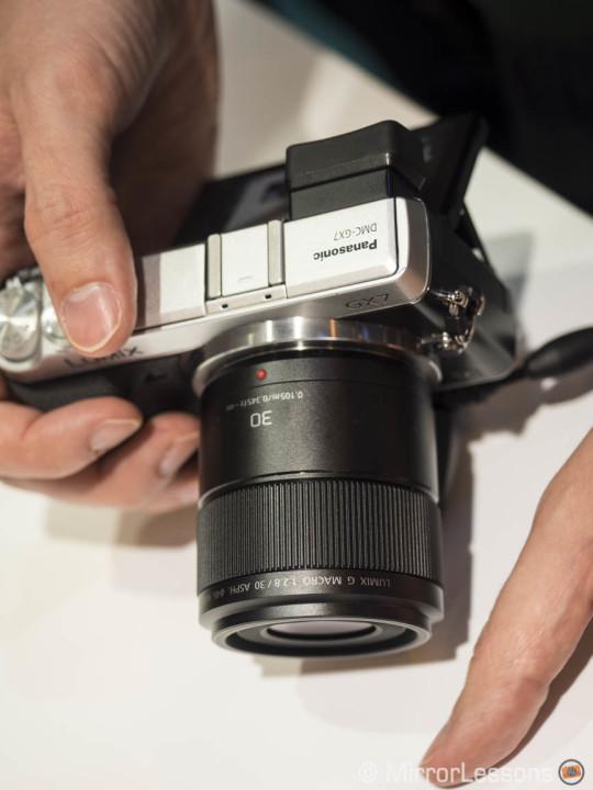 Lumix G 30mm f/2.8 Macro