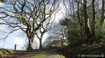 Exploring the ancient river gorge of Nant Gwernol – A Panasonic Lumix LX100 Gallery