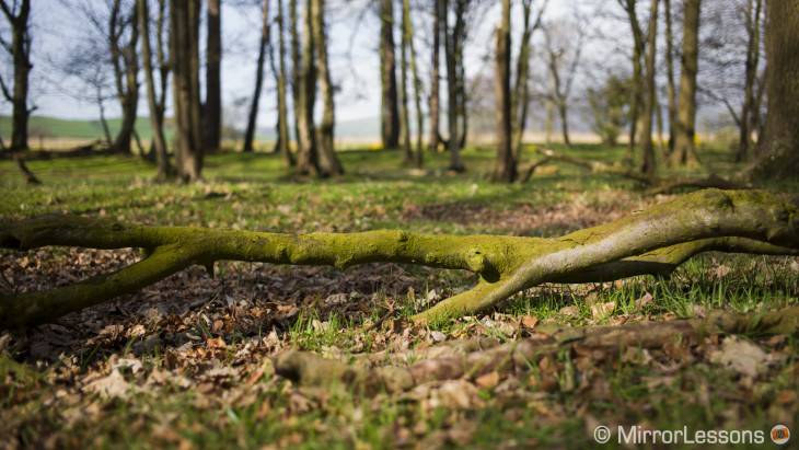 Shallow depth of field in landscape photography – A Leica M 240 gallery