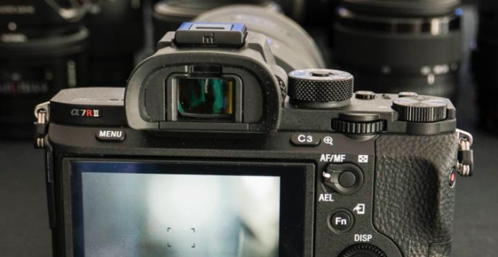 mirrorless cameras with viewfinder