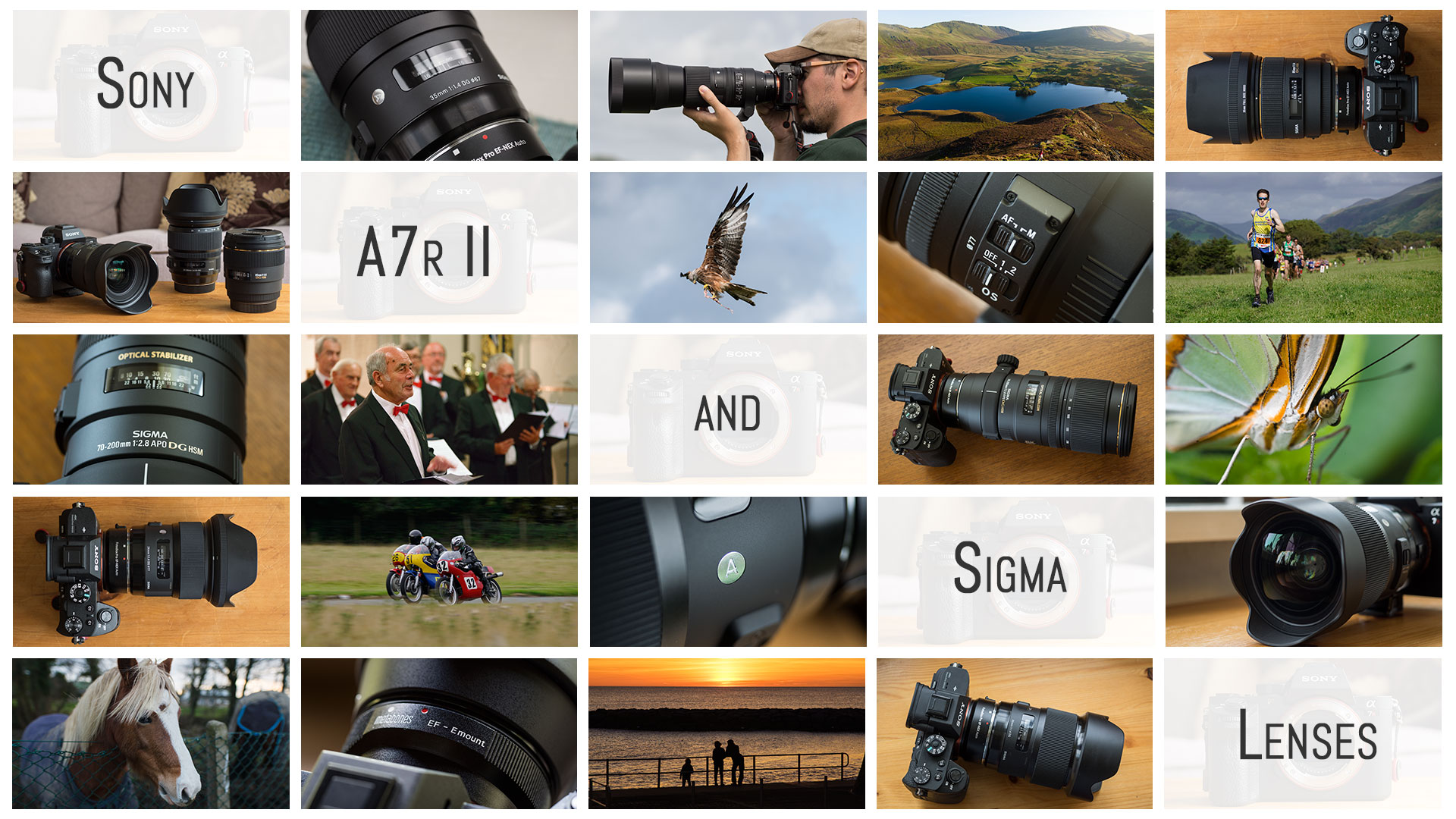 Sigma Lenses On The Sony A7r Ii A Personal And Going Round Up Alpha Body