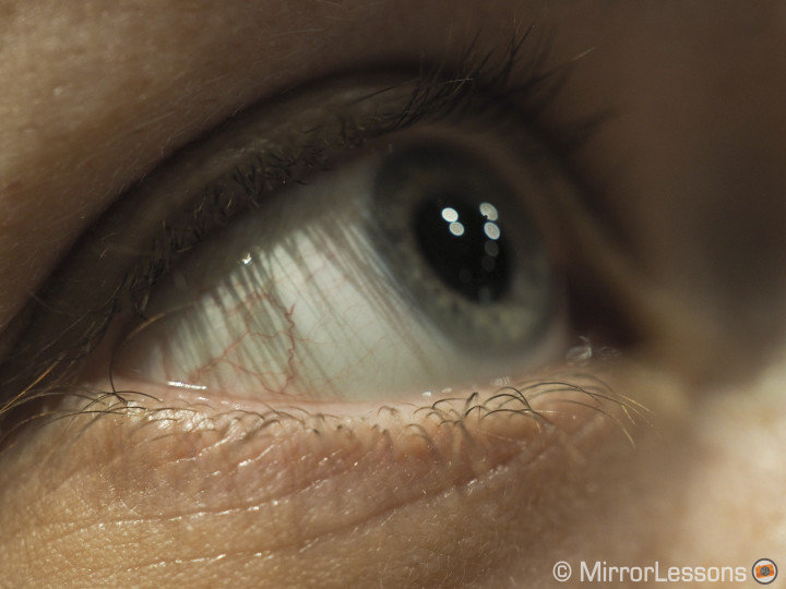 olympus 30mm f3.5 macro sample image