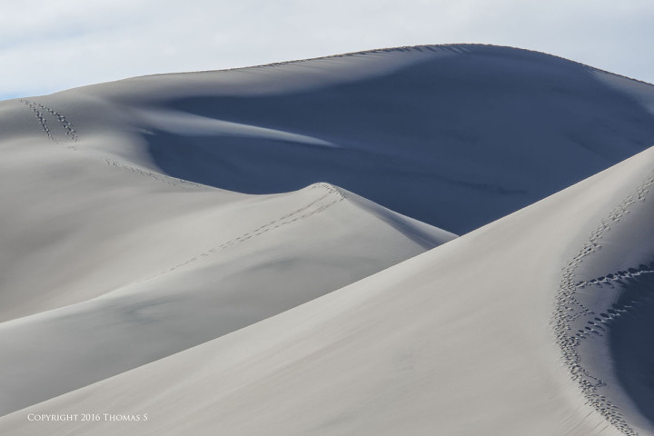 NIKON 1 J5 + 1 Nikon CX 70-300mm f/4.5-5.6 @ 300mm, efov 810mm, ISO 160, 1/200, f/9.0. Great Sand Dunes National Park Colorado.