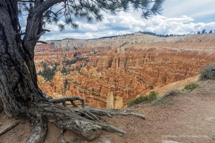 Nikon 1 J5 + 1 Nikon 6.7-13mm f/3.5-5.6, f/8, 1/125, ISO-160, 8mm, efov 21mm, Bryce Canyon National Park Utah.