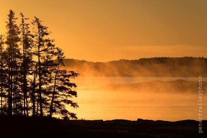 """Sea Smoke at Sunrise"" 1/2500, F5.6, ISO 200, @140mm"