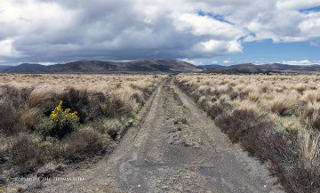 Touring New Zealand with Nikon Mirrorless