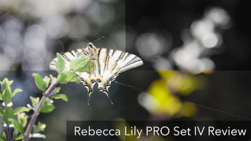 Rebecca Lily PRO Set IV Lightroom Preset Review